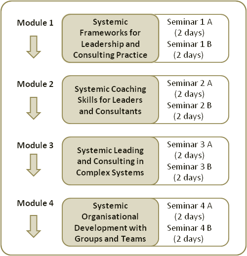 The Systemic Leadership and Consulting Training - Modules