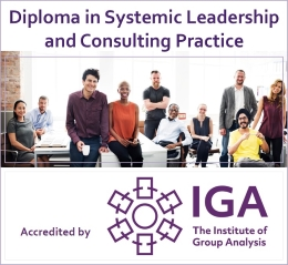 Diploma in Systemic Leadership and Consulting Practice - IGA - Logo