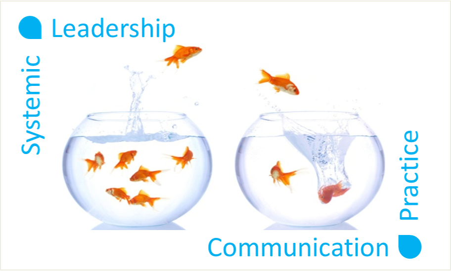 Systemic Leadership and Communication Practice October 29-30, 2018
